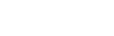 Bear Training Solutions Logo